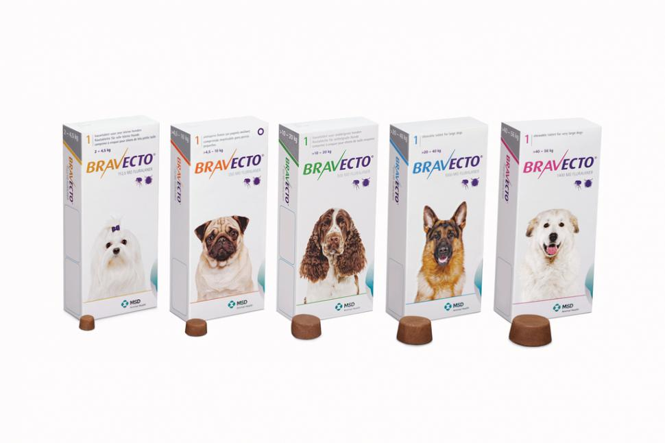 Flea & Tick Treatment Buy 3 get 1 FREE